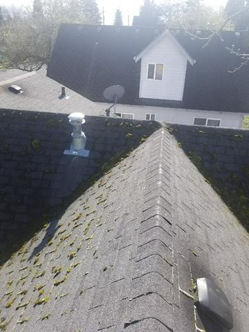 Damaged Roof Repair in Vancouver, WA